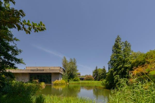 Levantamento fotográfico de edifícios, espaços e jardins da FCG, Jardim, margens - percurso do lago – foto Ricardo Oliveira Alves