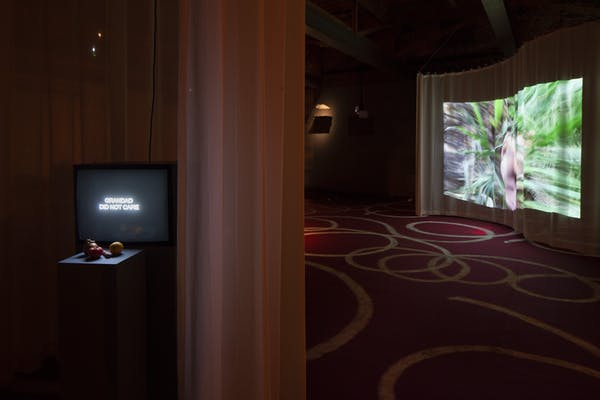 Laure Prouvost, Stong Sory Vegetables (installation view). Photo (c) Tom Callemin